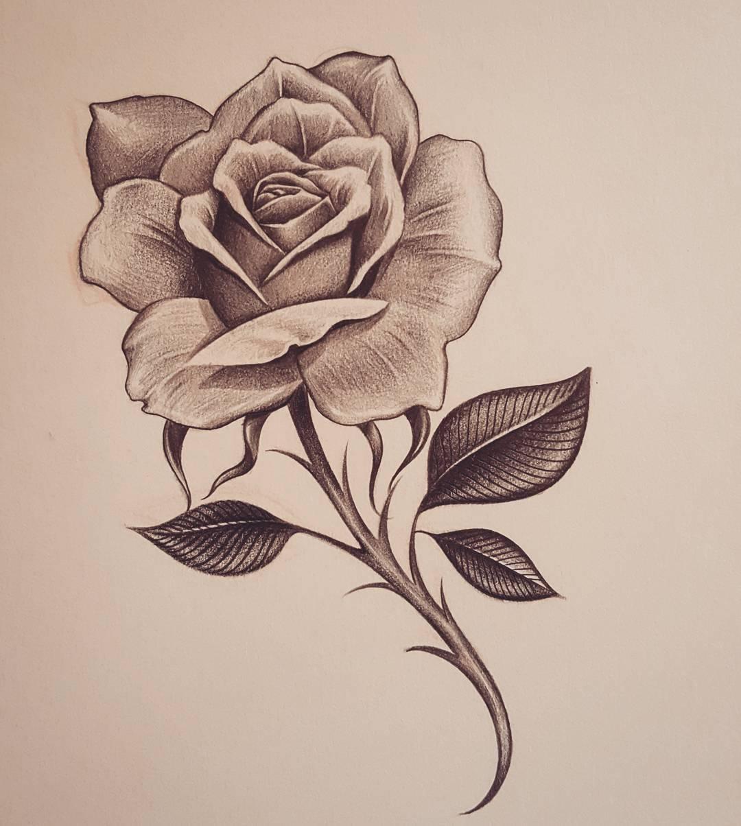 Jogom van - Rózsaliga alapítvány